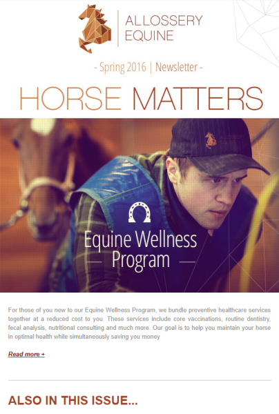 Client Newsletter - Allossery Equine